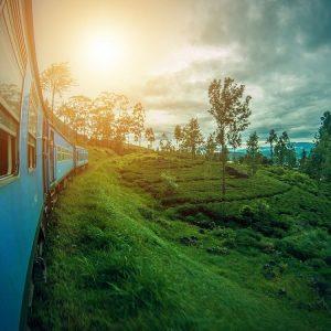 Vue sur les collines depuis la fenêtre d'un train au Sri Lanka