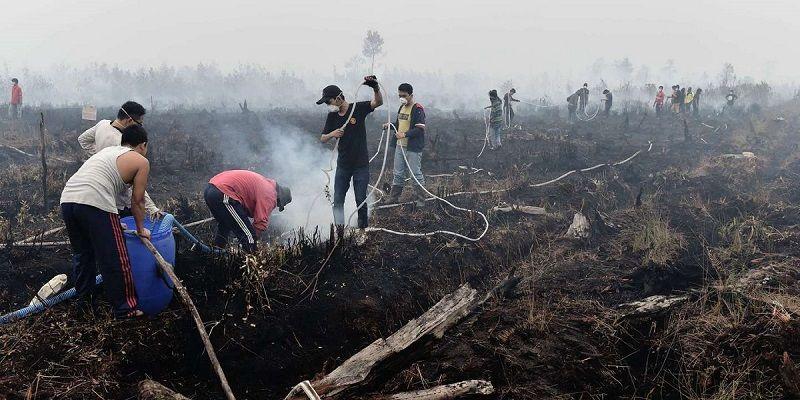 Hommes asiatiques brûlant des terres pour faire la place à des cultures