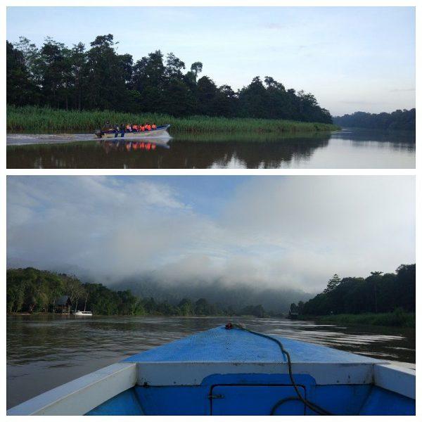 bateau à moteur sur la rivière Kinabatangan