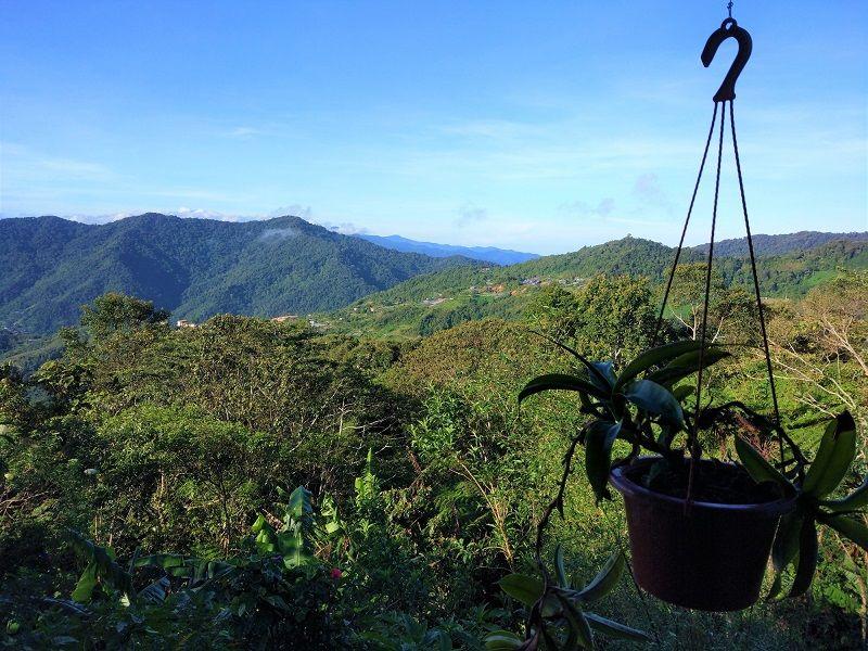 vue sur vallée du Mont Kinablau