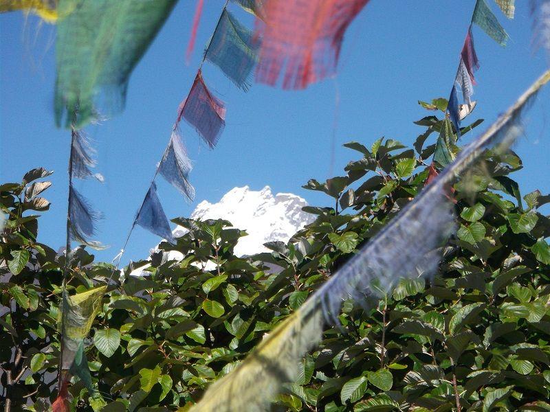 Sommet enneigé et drapeaux népalais
